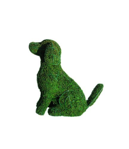 Dog 13 inches high x 17 inches wide x 7 inches diameter w/ Moss Topiary Frame , Handmade Animal Decoration