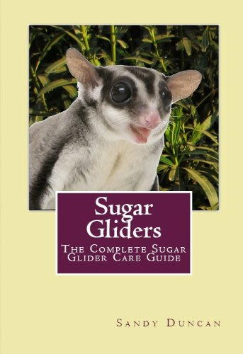 Care Sugar - Sugar Gliders: The Complete Sugar Glider Care Guide