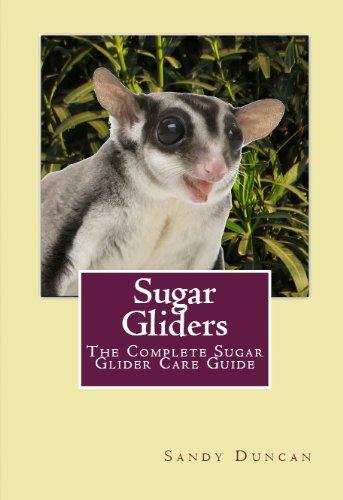 - Sugar Gliders: The Complete Sugar Glider Care Guide