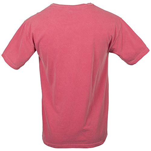 Comfort Colors Men's Adult Short Sleeve Tee, Style 1717