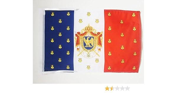 AZ FLAG Bandera del ESTANDARTE Imperial DE NAPOLEÓN III 45x30cm - BANDERINA Napoleon Bonaparte 30 x 45 cm cordeles: Amazon.es: Hogar