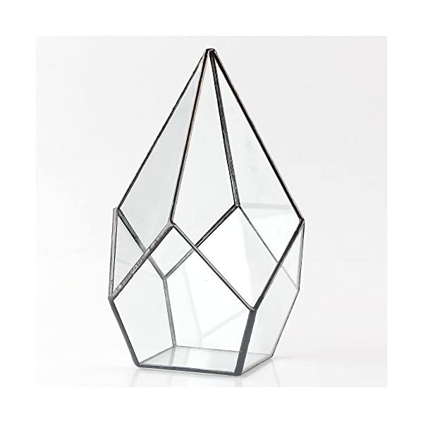 Modern Artistic Clear Glass Geometric Terrarium Four Surfaces Diamond Succulent Fern Moss Air Plant Flower Pot Office Desktop Box Window Display Planter For Wedding Decoration No Plants Included
