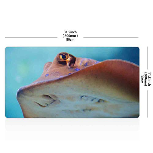 Mouse Pad Rectangle Mouse Pad Animal Aqua Aquarium Colorful Diving Fish Marine #21917 360 Protection 260mm210mm3mm