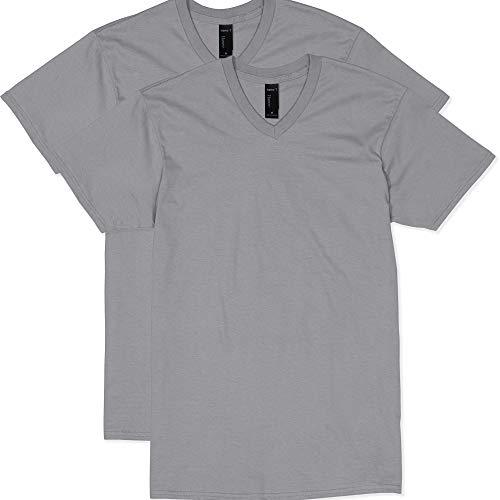 Hanes Men's Nano Premium Cotton V-Neck T-Shirt (Pack of 2), Vintage Gray, Small (Gray Vintage Tshirt)