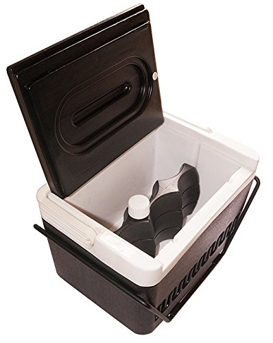 Golf Cart Cooler with Mounting Bracket
