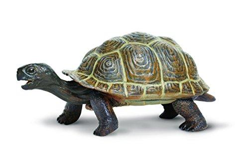 Safari Ltd  Incredible Creatures Tortoise ()