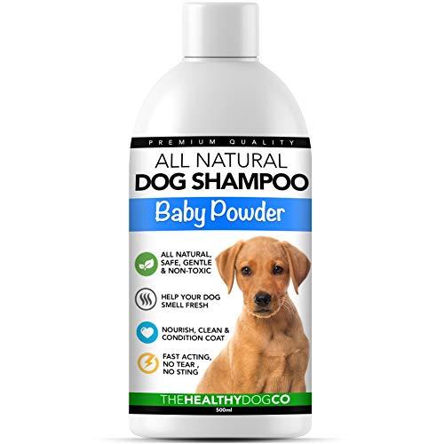 🥇 Champú para perro completamente natural olor a polvos de talco para bebé | 500ml | Champú perfumado para acicalar a su perro | El mejor champú para mascotas para un lavado sano