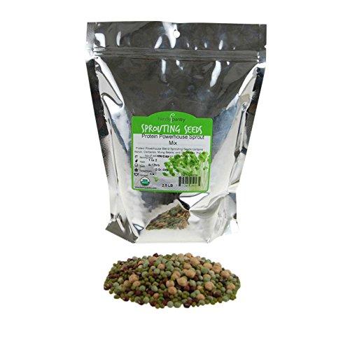 Adzuki Sprouting Seed (Protein Powerhouse Sprouting Seed Mix: 2.5 Lb - Organic, Non-GMO - Sprouting Sprouts, Food Storage. High Protien Sprouts - Pea, Mung, Green Pea, Adzuki)