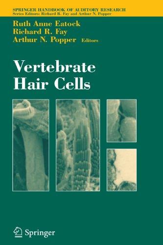 Vertebrate Hair Cells (Springer Handbook of Auditory Research)