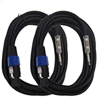 Seismic Audio - SASPT14-15-TwoPack - Two Pack of Speakon to 1/4 Speaker Cables 15