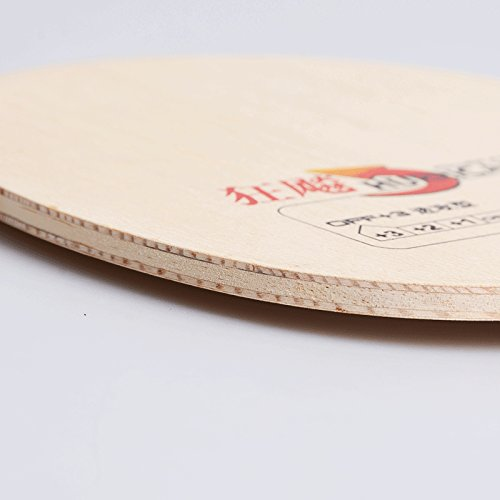 DHS Wood Table Tennis Blade - Shakehand Flared Handle, Ping Pong Blade, Hurricane H-WL