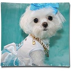 Designer Maltese Dog Two Sides Printed Polyester Velvet Throw Pillow Case For Car Bed Size 18x18 Inch