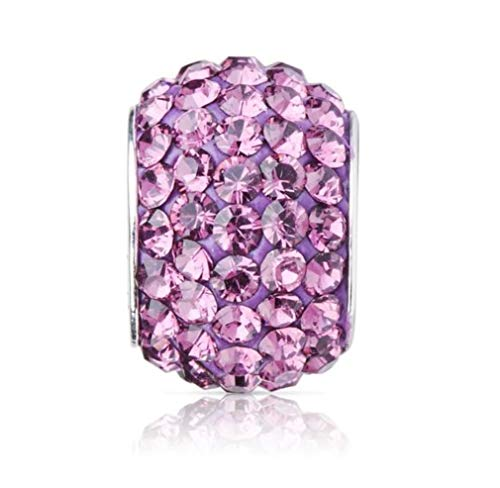 925 Sterling Silver February Birthstone Charm Bead Swarovski Crystal Elements fit All Charm Bracelets Women Girls Gifts EC684-2