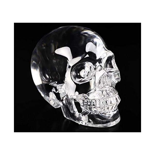 Skullis 5.0″ K9 Crystal Skull, Hand Carved Gemstone Fine Art Sculpture, Reiki Healing Stone Statue.