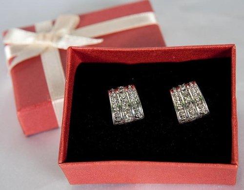 Avon Day to Night Earrings (Avon Strand Earrings)