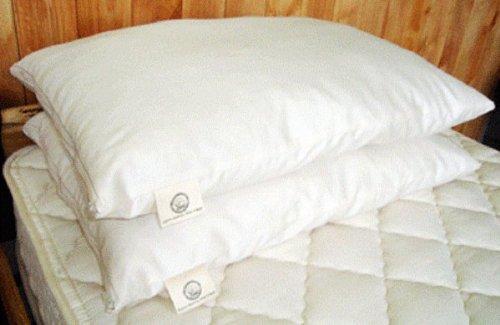 Holy Lamb Organics Woolley 'Down' Pillow - Queen by Holy Lamb Organics