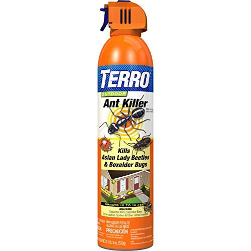 TERRO 1700 T1700 19 oz. Outdoor Ant Killer Spray