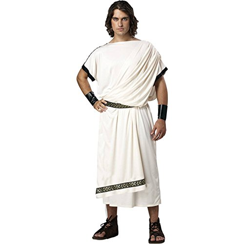 Deluxe Classic Toga Adult Costume - One (Socrates Costume)
