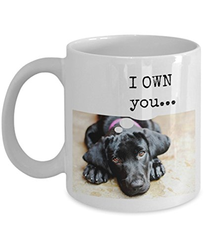 Funny Black Labrador Retriever Gift Mug -- I Own You... - 11 Oz. Ceramic Coffee Mug Perfect For Black Lab Lovers And Owners Picture