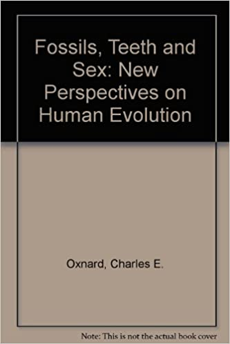Evolution fossil human new perspective sex tooth