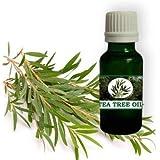 Nilgiri Products - Pure & Natural Tea Tree Oil 10 ML