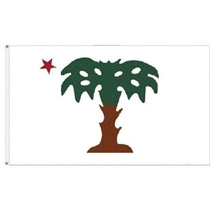 Amazon Com Moon Knives Palmetto Guard Flag 3x5 Ft South Carolina