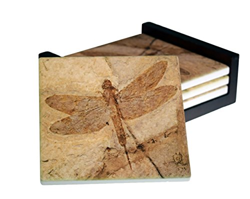 Fossil Dragonfly Images - 4-Piece Square Sandstone Coaster Set - Caddy Included