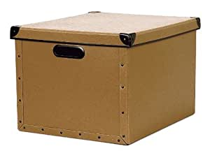 Cargo Naturals Dual File Box, Nutmeg, 10-3/4 by 15-1/2 by 12-1/2-Inch