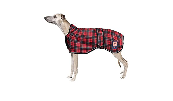 Ginger Ted - Abrigo impermeable para perro (galgo, perro de caza ...