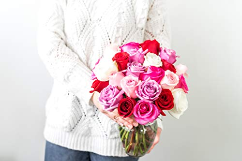 Flowers - 2 Dozen Roses in Red, Pink, Purple & White (Free Vase Included) by From You Flowers (Image #4)