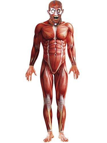 Men's Muscle Anatomy Anatomical Body Structure Bodysuit Costume Large 42-44 Red/White - http://coolthings.us