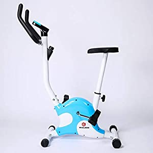 Endless Exercise Bike India