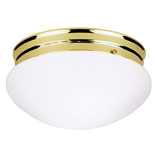 Westinghouse Lighting 2-Light Ceiling Fixture, Polished Brass