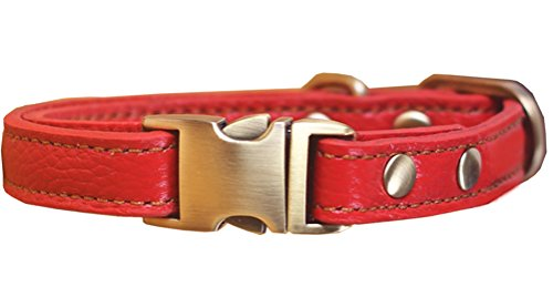 Tellpet Leather Dog Collar with Quick Release Buckle, Red, Large