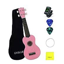 Soprano Ukulele 21 inch for Beginner Hawaii Ukulele with Picks, Extra String, Wipe, Bag (Pink)