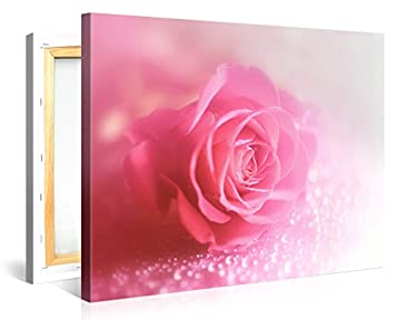 Large Canvas Print Wall Art ROMANTIC PINK ROSE PEARLS 40×30 Inch Flower Canvas Picture Stretched On A Wooden Frame Giclee Canvas Printing Hanging Wall Deco Picture e6203