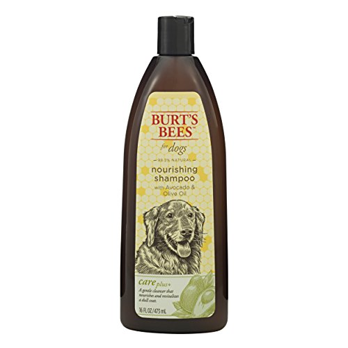 Best avocado oil dog shampoo list