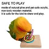 Bird Toys, Wooden Parrot Trick Tabletop Parrot
