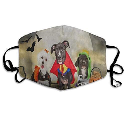 Adjustable Ear Loops Mouth Mask Hipster Puppy Dog Dressed In Halloween Costumes Anti-dust Face Mask Washable Dustproof Anti-bacterial Masks Polyester Breath Safety Warm Outdoor Masks For Men And Women]()