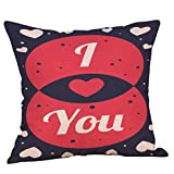 Valentine's Day Throw Pillow Covers Supersoft Square Cushion Cases for Home Decor Sofa Bedroom Cotton Linen 18 x 18 Inch (E)