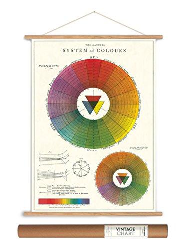 Cavallini Papers Vintage Style Decorative Poster & Hanger Kit 20 x 28, 20 x 28