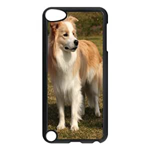Generic Case Border Collie For Ipod Touch 5 G7F6653804