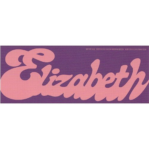 AKB48 Heart electric enclosure privilege band nickname sticker [Watanabe  Mayu Elizabeth Elizabeth] (japan import)