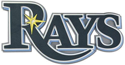 Foam Fanatics Tampa Bay Rays Foam Logo - Ray Sign