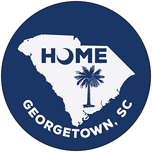 (R and R Imports Georgetown South Carolina State Shape Map Summer Trendy Souvenir 4