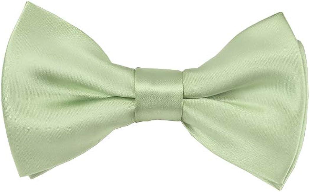 New Men/'s Formal stripes polyester Neck Ties /& Hankie set sage green wedding