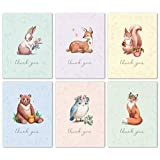 Woodland Animal Thank You Cards Bulk Box Set of 48 Blank Cards with Envelopes - Baby Shower Note Cards, Wedding Thank You Cards or Bridal Shower Thankyou Card