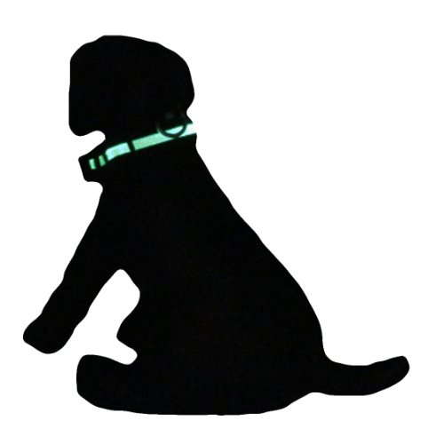 Alfie Pet – Zwart Flashing Pet Safety Collar – Collar Color: Black, LED Light Color: Green, Size: S, My Pet Supplies