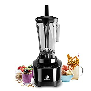 Ventray Pro 600 Professional 1500-Watt 8-Speed Multi-Function Blender