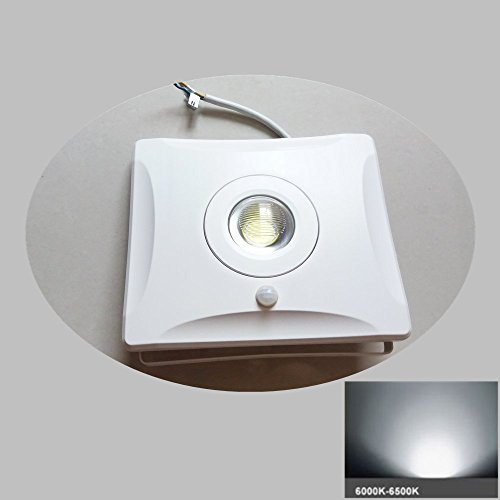 PIR Motion Floodlight Outdoor Indoor Motion Sensor Light 30W LED floodlight Water-proof AC85-265V Garden Floodlight Pure White (PIR Sensor Pure White 30W)